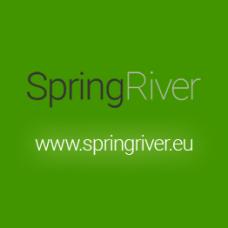 Предварительный очиститель-концентрат Riwax® Carline Spray Wash ES 20 л / канистра
