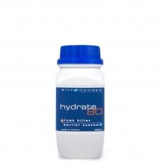 Bilt Hamber Hydrate 80 Rust Converter 500 ml